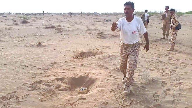 """الأمم المتحدة تدعو لإزالة الألغام بعد """"خسائر مأساوية"""" في صفوف المدنيين بمحافظة الحديدة"""