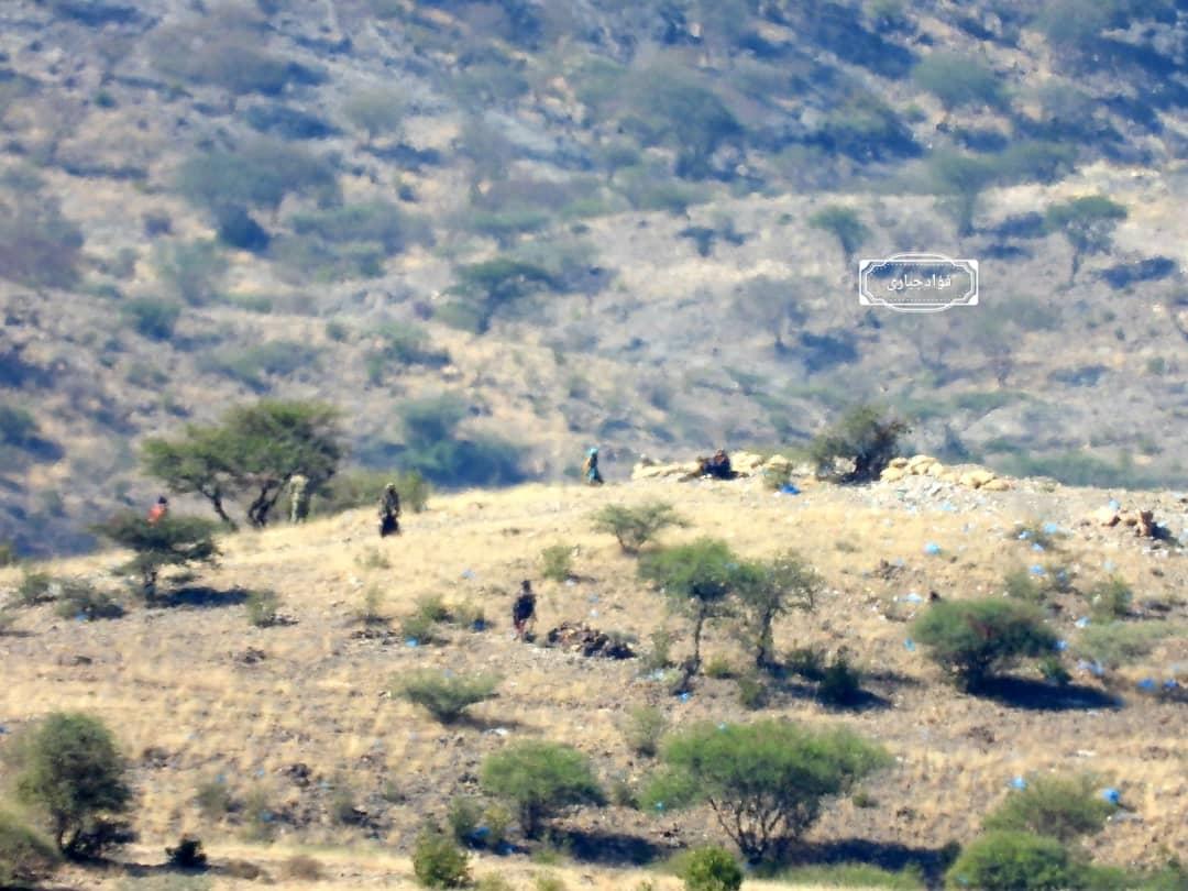 سقوط مواقع جديدة في مديرية الحشاء بيد القوات المشتركة وإسقاط طائرة مسيرة في مريس